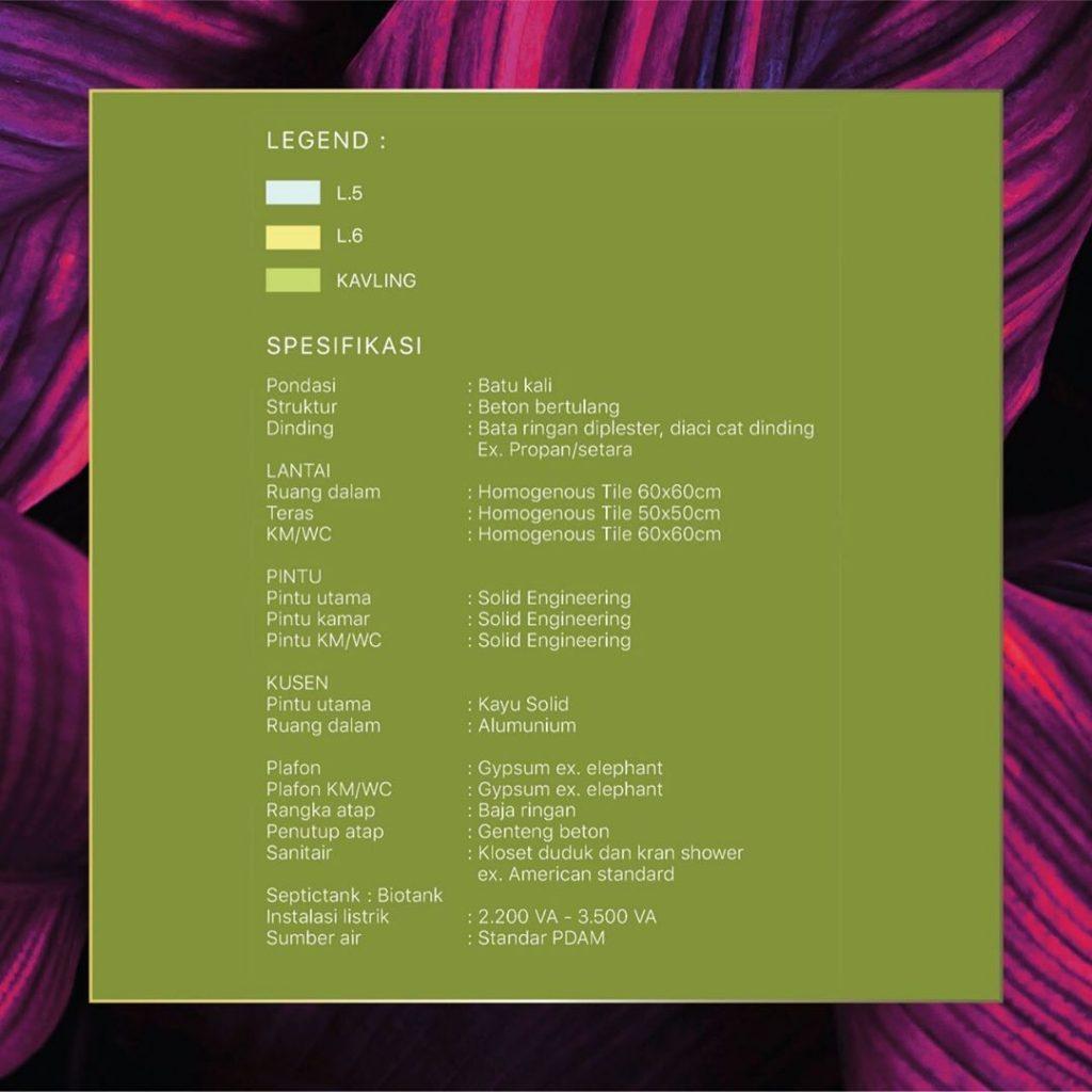 Spesifikasi Calathea Citragrand cibubur CBD