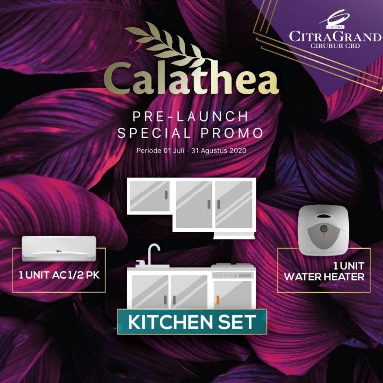 Calathea CitraGrand Cibubur CBD