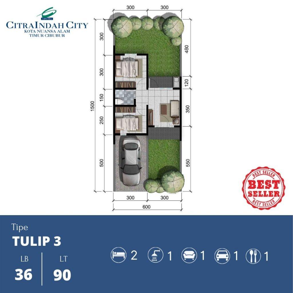 Denah Tipe Tulip 3 - 36-90 Citra Indah City