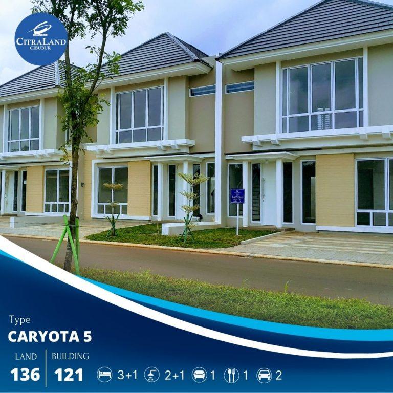 Caryota